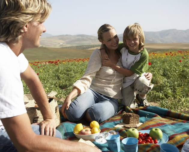 Family having picnic, boy (8-10) embracing mother, smiling, portrait