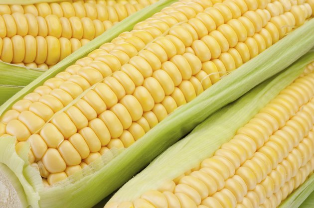 Corn on the cob with green leaves