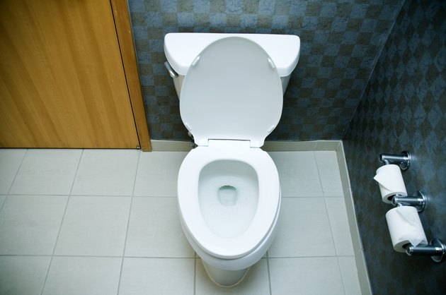 """Hotel Room Toilet, Concept"""
