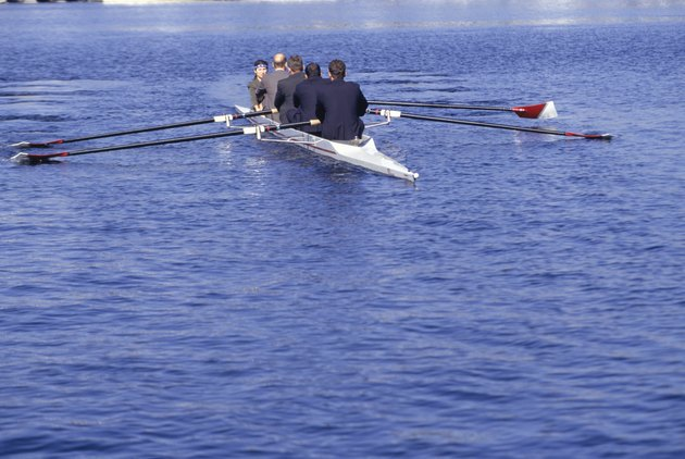 Businesspeople rowing in bay, (rear view)