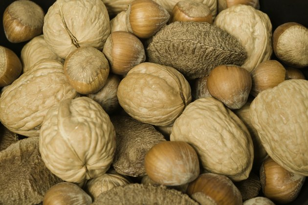 Mixed edible nuts in shells close-up