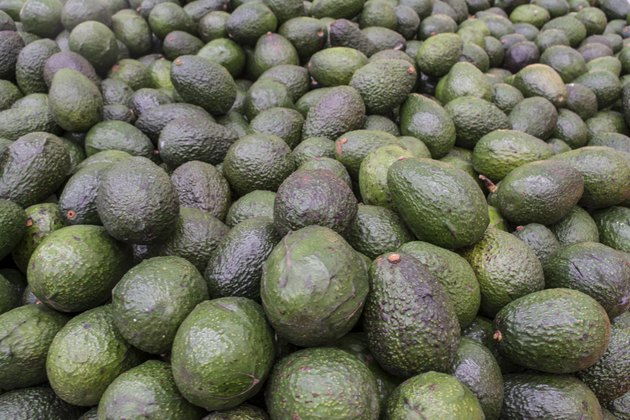 Group of Avocados