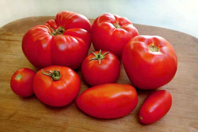 Homegrown organic tomatoes
