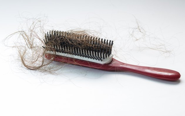 Hair fall on a red comb isolated on white background
