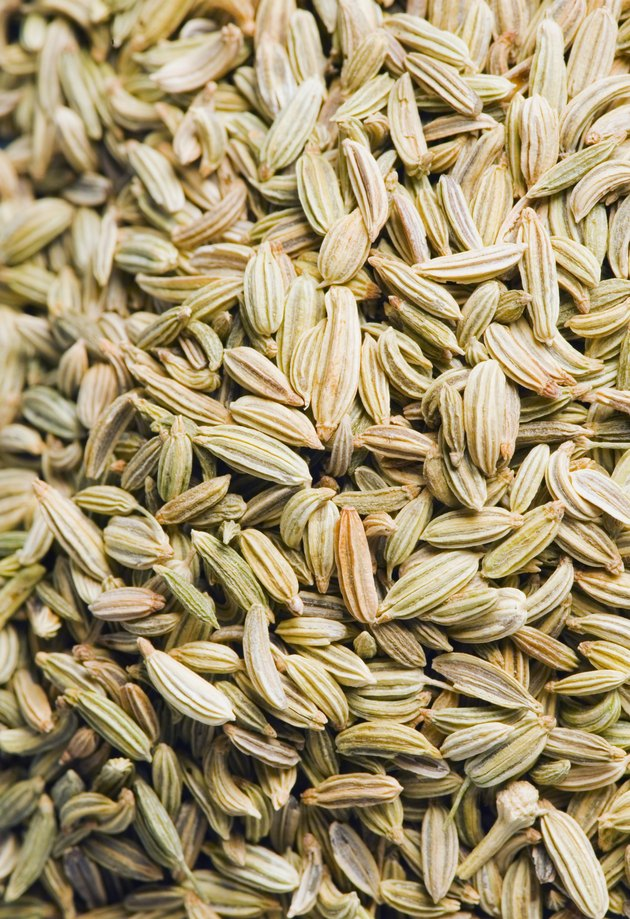 Close-up of Fennel seeds
