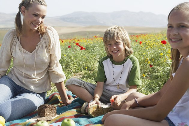 Mother by son and daughter (9-11), having picnic, smiling, portrait