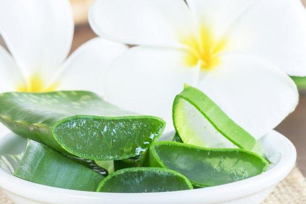 Aloe Vera  use in spa for skin care