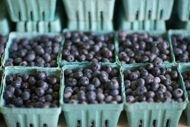 Blueberries in Cartons