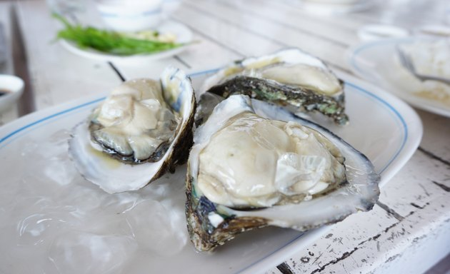 Fresh oyster on white plates