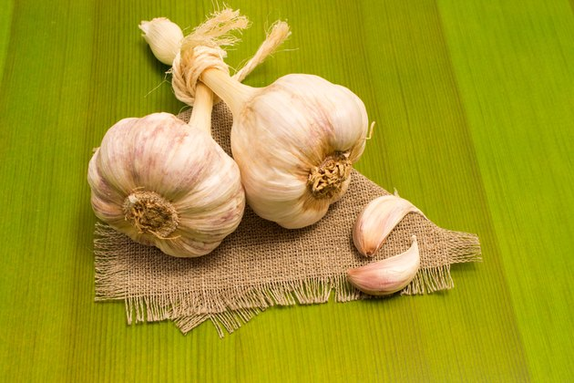 fresh garlic on green board close up