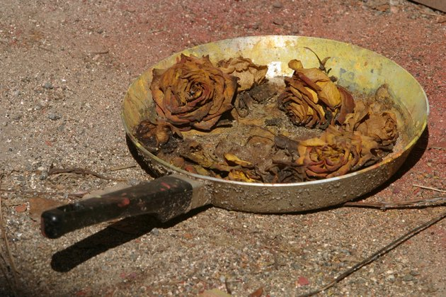 Fried roses