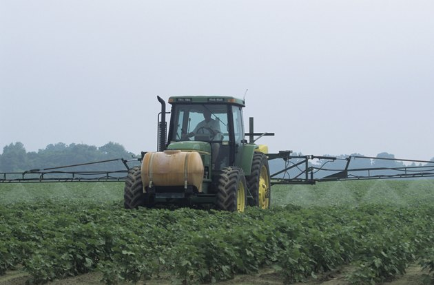 Spraying insecticide in young cotton field