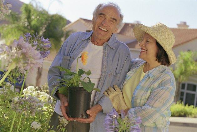 Senior Hispanic couple gardening