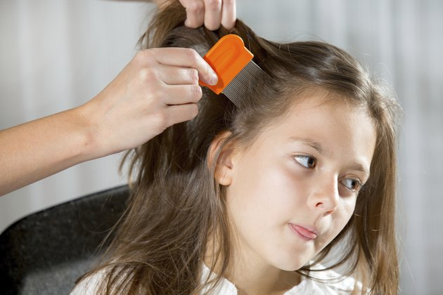 Mother using a comb to look for head lice