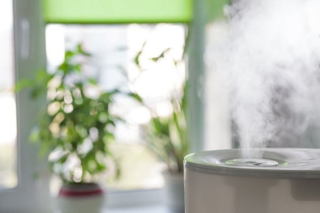 Humidifier spreading steam