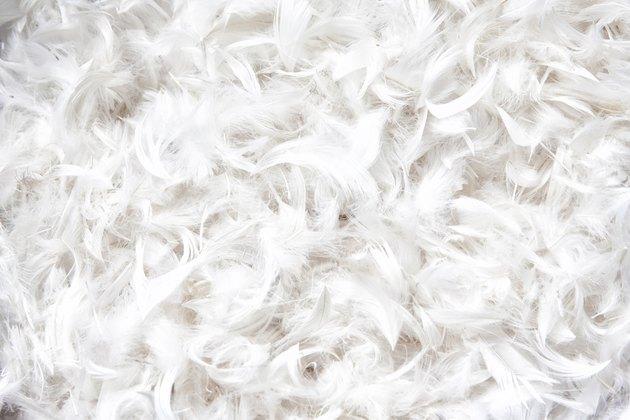 soft, weightless, gentle bird plumage texture for pillow