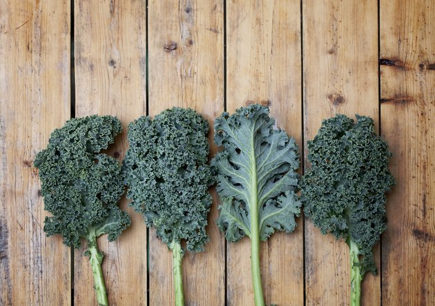Kale super vegetable on wooden textured background