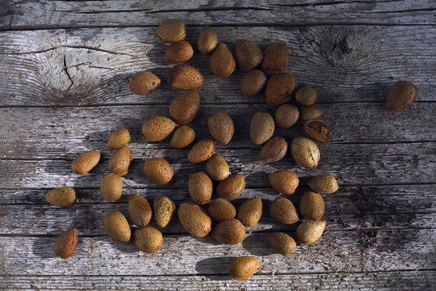 Bunch of almonds unshelled, badam, forest fruit harvest on wood
