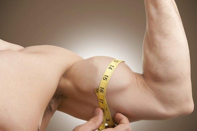 Measuring His Bicep