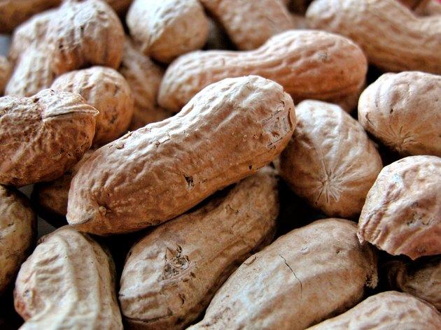 noccioline o arachidi