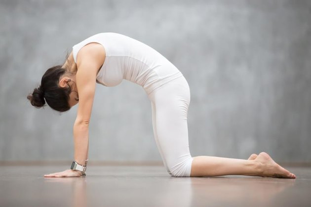 Beautiful young woman with tattoo on her foot meaning 'Wild cat' working out against grey wall, doing yoga or pilates exercise. Cat, Marjaryasana, asana paired with Cow Pose on the inhale. Full length