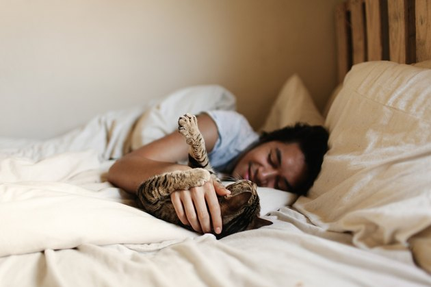 man and tabby cat in bed