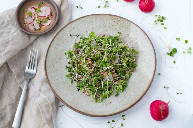 Top view of a salad with microgreens and radishes