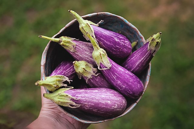 Stay Away From These Nightshade Vegetables If You Have a Sensitivity | Livestrong.com
