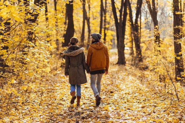 fall foliage hiking