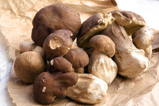 A pile of porcini mushrooms on a brown crumpled paper