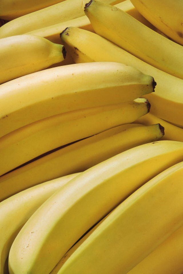 Bananas-Only Diet