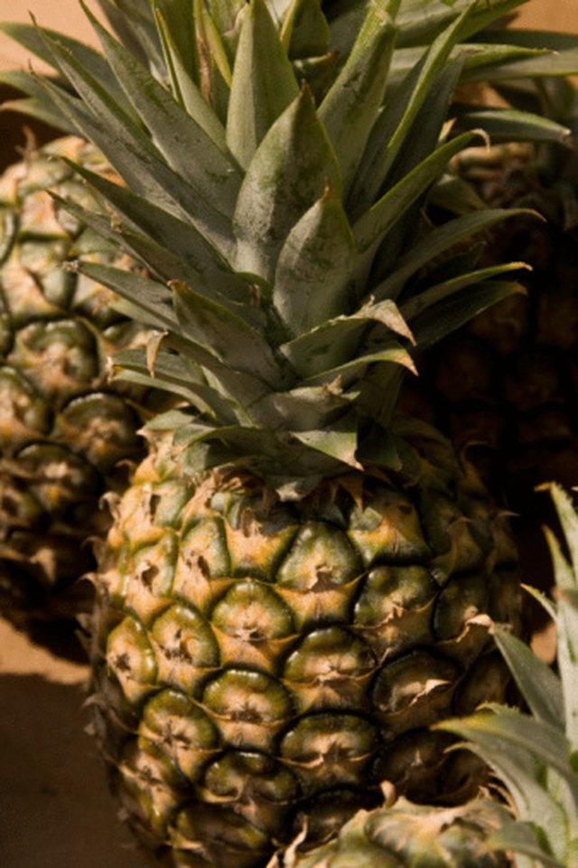 Fruits & Vegetables High in Enzymes