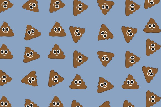 What the Shape of Your Poop Can Tell You About Your Gut Health