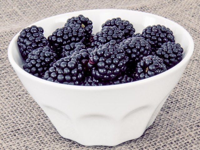 Blackberries in a white bowl