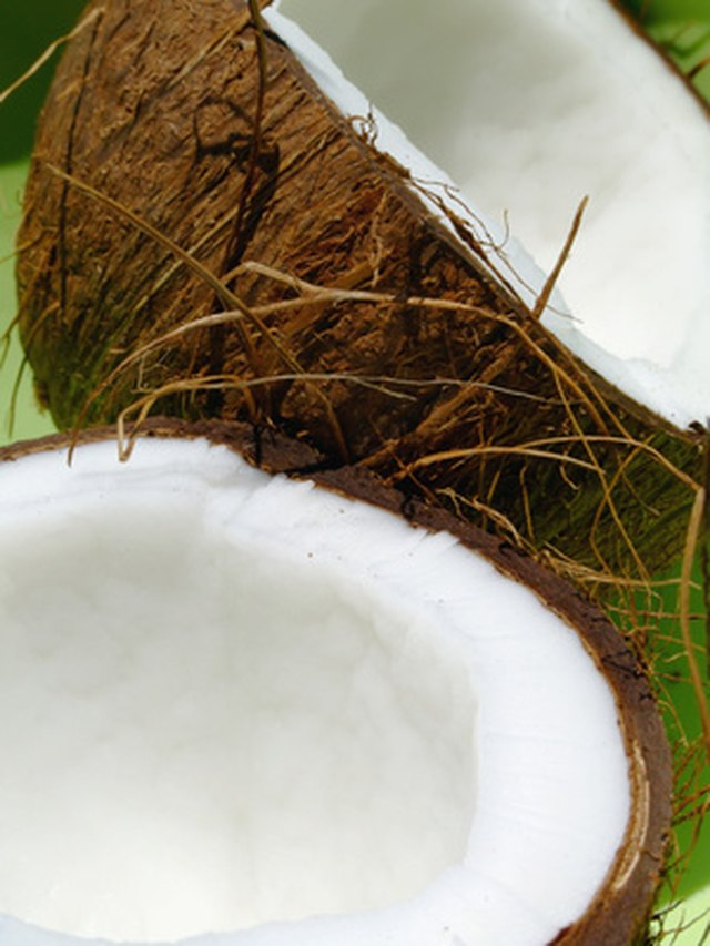 The Carbohydrate Content of Coconut Flour