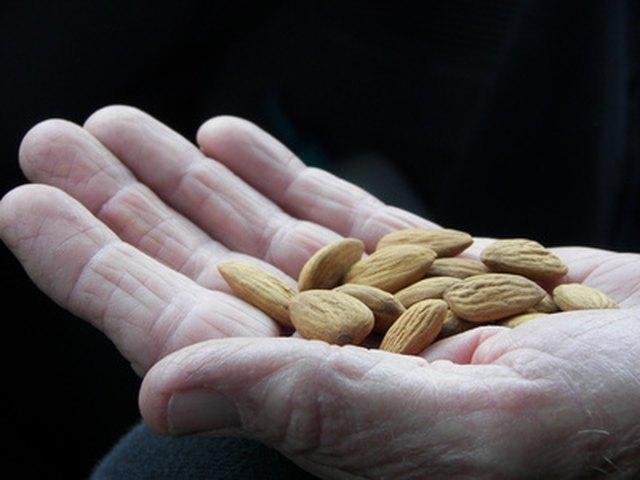 Almond Allergy Symptoms in Infants