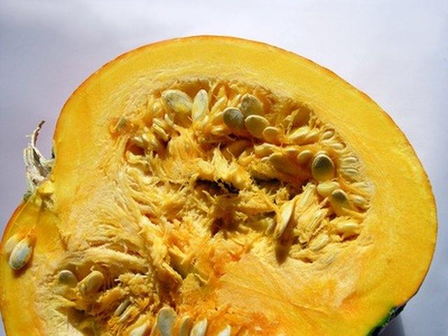 Allergies to Pumpkin Seeds