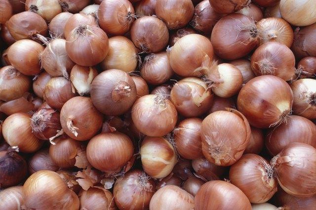 Onions, Israel