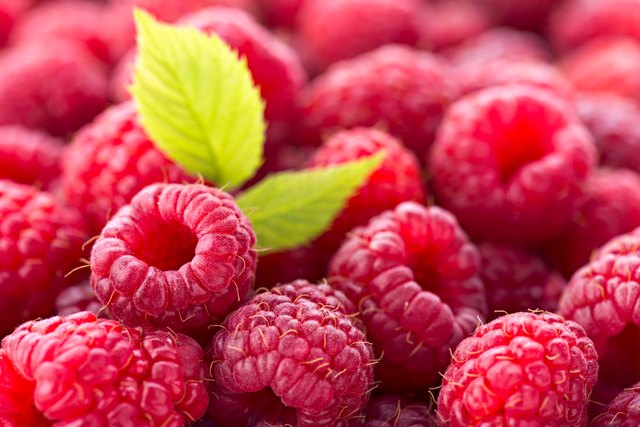 Ripe red raspberries