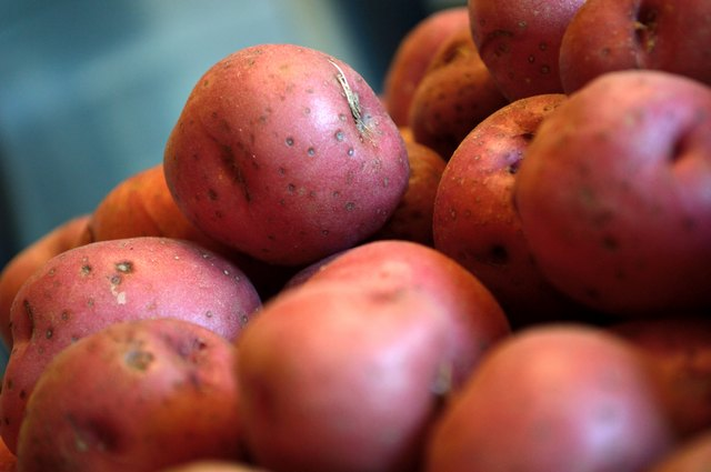 Pile of red new potatoes against blue gray background