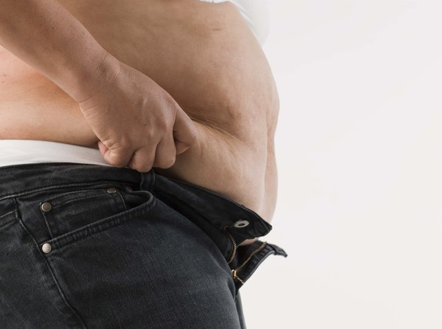 The Effect of Fat on Kidneys