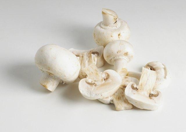 Pile of mushrooms