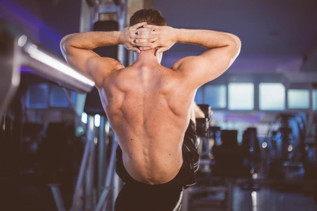 Attractive athletic back of young man doing incline bench sit-up exercise in indoor well equiped gym.