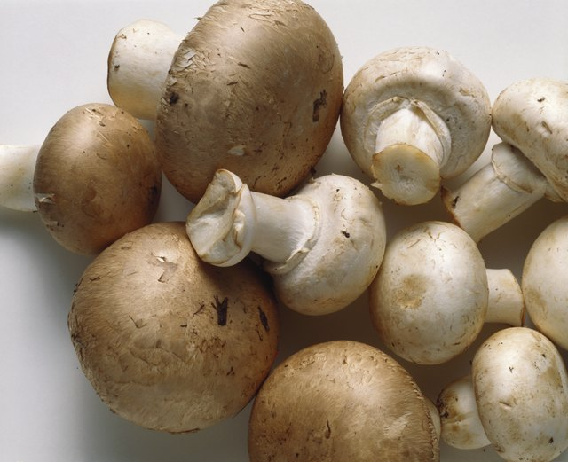 White Mushrooms & Brown Mushrooms