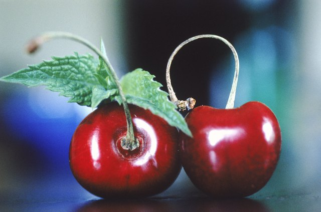 Cherries and Weight Loss