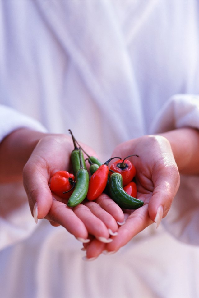 Hands holding hot peppers