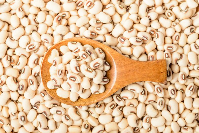 uncooked white cow pea beans in wooden spoon, top view