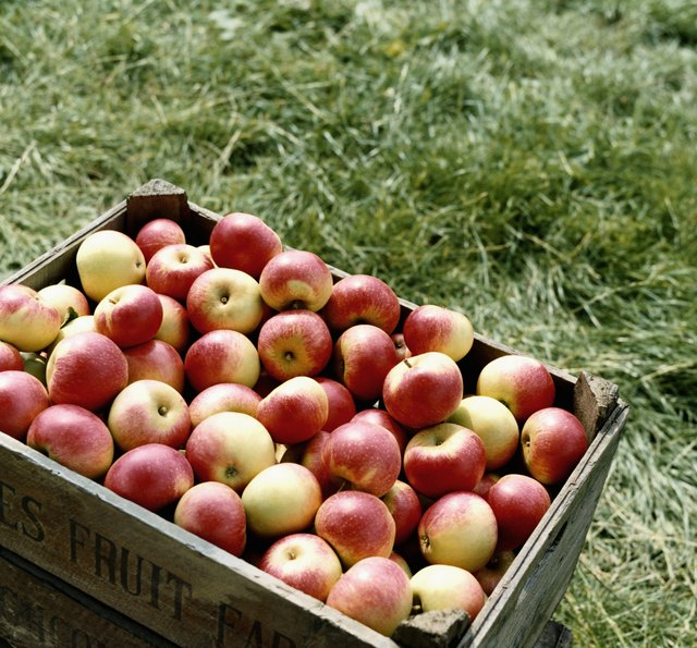 Do Apples Raise Your Blood Sugar?