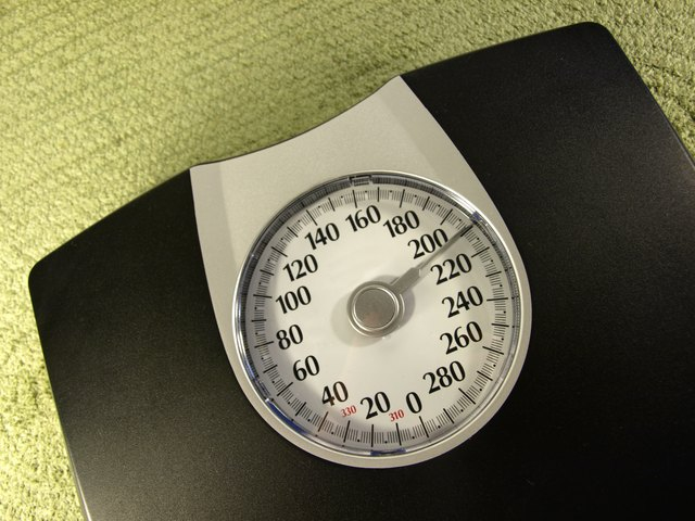 Is Syntha-6 Good for Weight Loss?