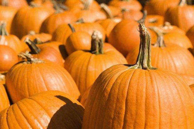 Group of pumpkins at produce market.